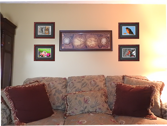 Room with Frames.png