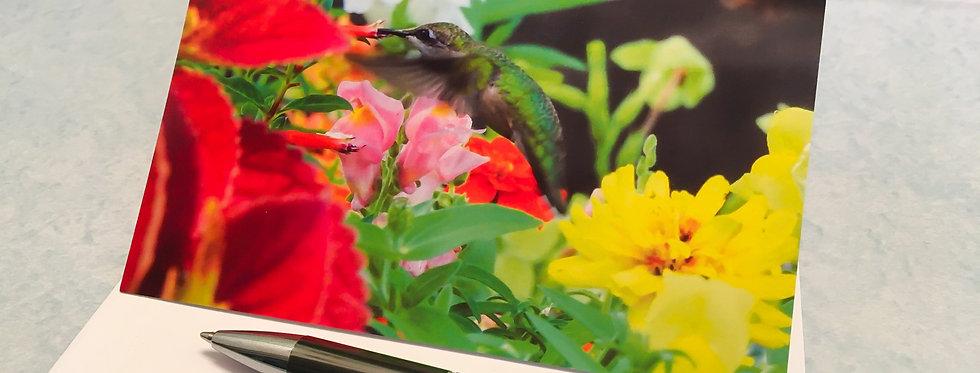 Hummingbird (Flowers) Blank Note Card