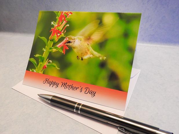 Hummingbird Mom JPG.jpg