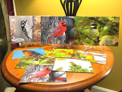 Bird Photos and bird postcards