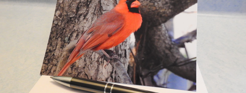 Cardinal Blank Note Card