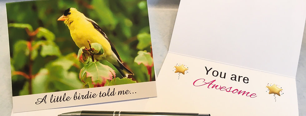 American Goldfinch You are Awesome Card