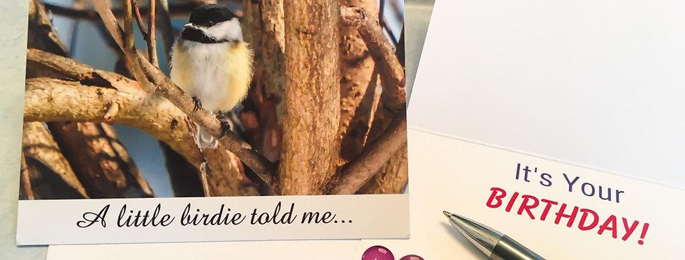 Black-capped Chickadee Birthday Card