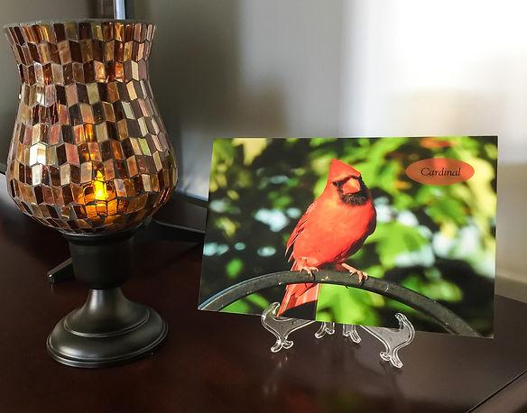 Cardinal Easel JPG.jpg