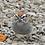 Thumbnail: Summer Birds Set (3 Photos)