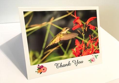 Hummingbird Thank You Card JPG Final.jpg