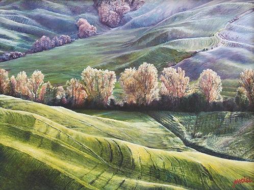 Hillside Serenity