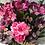 Thumbnail: Cottage garden crate, purple faux flower arrangement