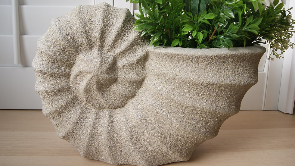 Nautilus shell planter pot