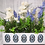 Thumbnail: Lavender and Poppy table centre box