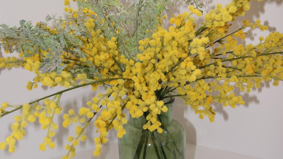 Mimosa  Arrangement