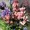 Thumbnail: Cottage garden crate, pink and blue faux flower arrangement