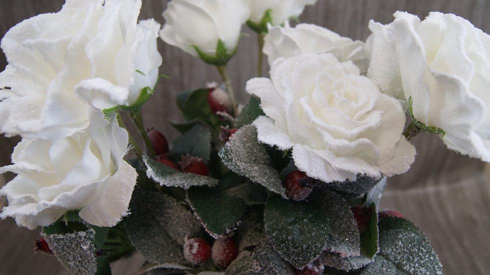 Snowy roses