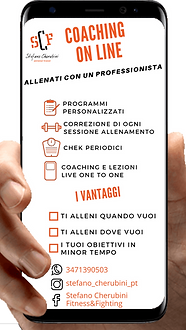 COACHING ON LINE BBB.png