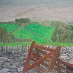 View from Mayfield Alpaca Farm