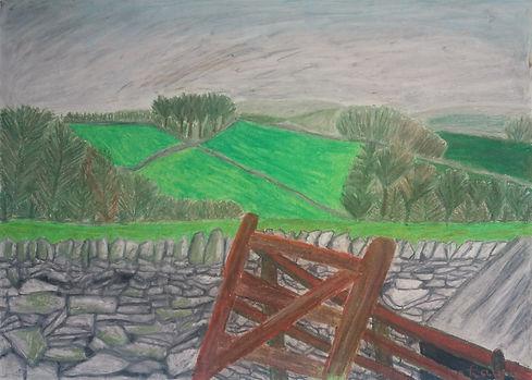 View from Mayfield Alpaca Farm, Sheffiel
