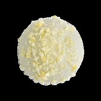 whitebite_lemon_1280x1280.png
