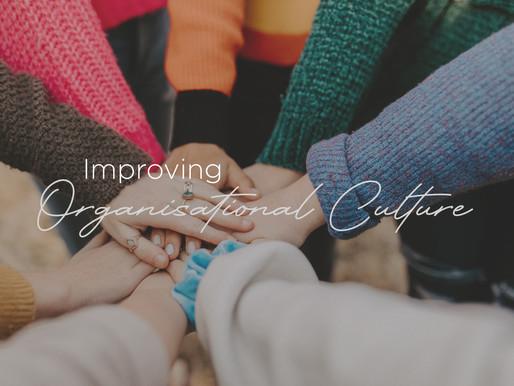 Improving Organisational Culture - Rattler Magazine - November 2020