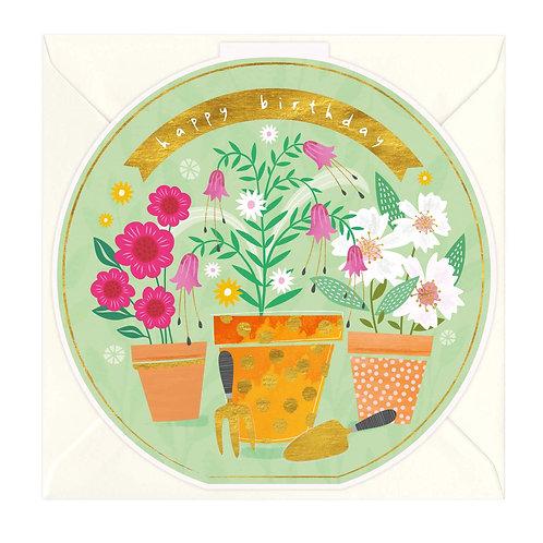 Happy Birthday - Potted Plants