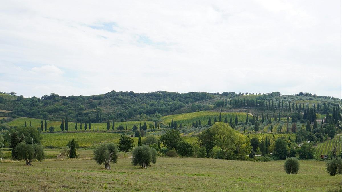 Tuscany (11)