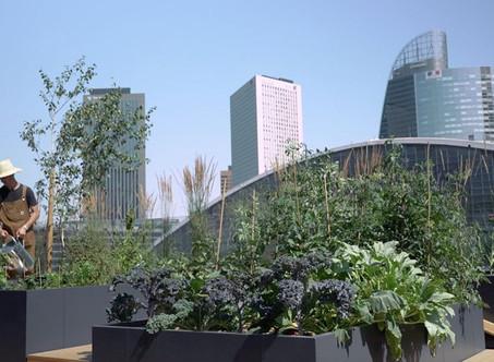 Green Cafet' : les solutions écologiques pour votre cafétéria d'entreprise