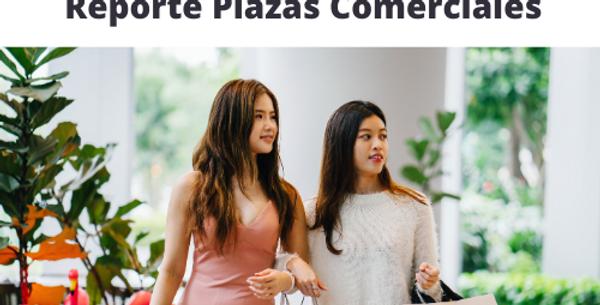 Reporte Plazas Comerciales Nuevo León