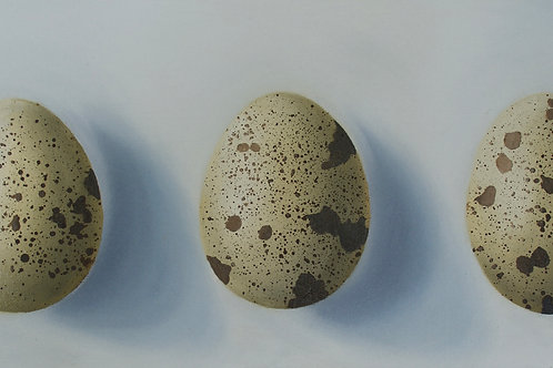 ThreeQuail Eggs