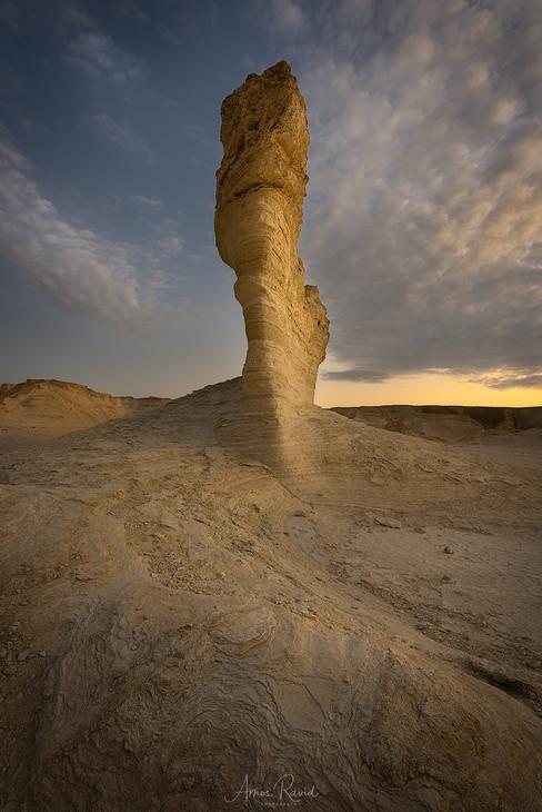Sculptures of nature
