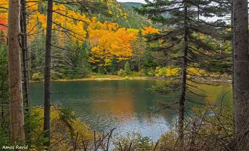 Greeley-Pond