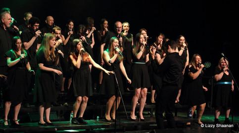 Vocalocity on Stage