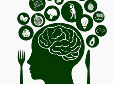 O que você alimenta seu cérebro molda quem você é