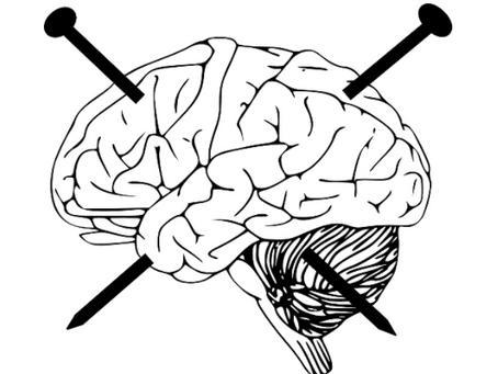 Neurociências e Comportamento