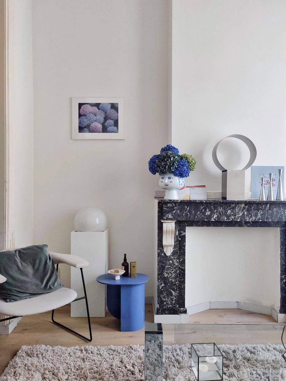 hydrangea painting + ornament