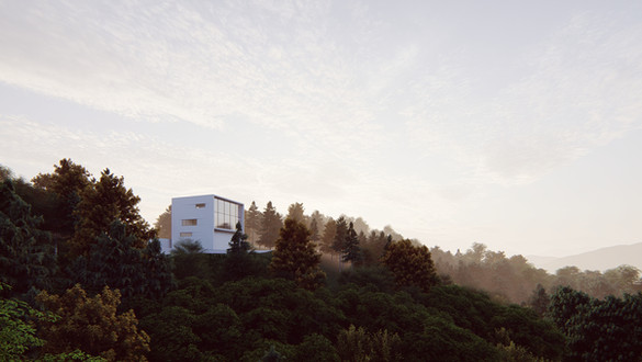 Payne Residence