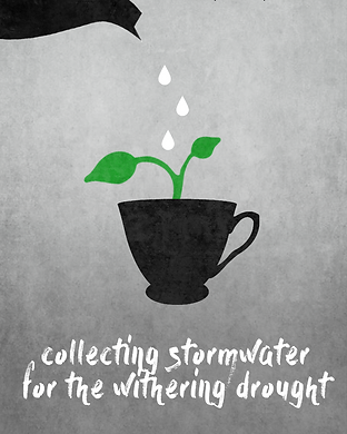 collecting stormwater.png