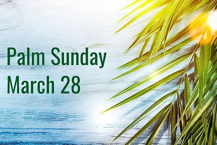 Palm Sunday 2021.jpg