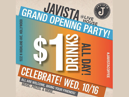 JAVISTA GRAND OPENING PARTY