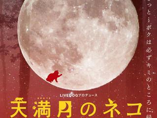 市村和樹 出演舞台情報 LIVEDOGプロデュース 天満月のネコ