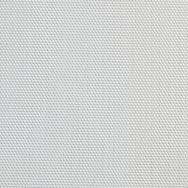 White (536)