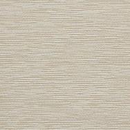 Ivory (9003)