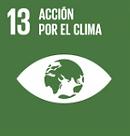 ONU_ACCIÓN_POR_EL_CLIMA.PNG