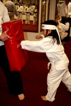 Young Karate White Belt