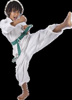 Green Belt trains at Lakeland Karate