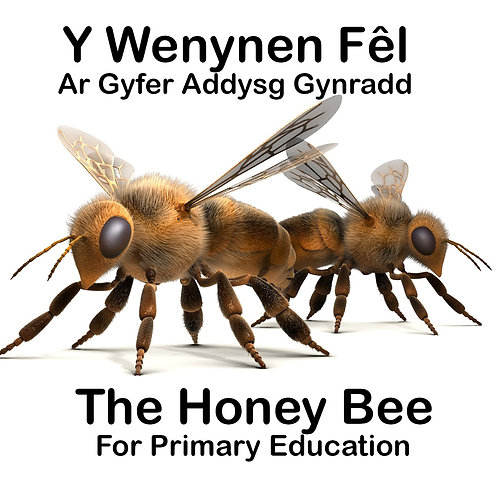 'The Honey Bee' Education Pack