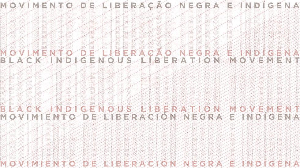 Black Indigenous web banner_peq_2.jpg