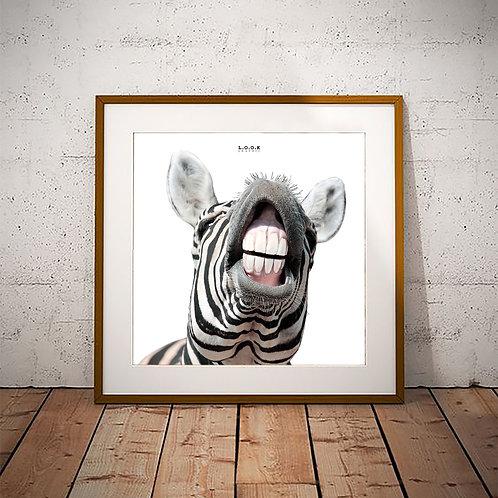Zebra-plakat