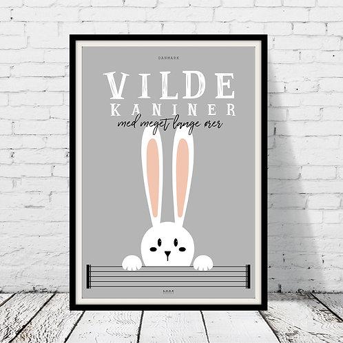Vilde kaniner-plakat