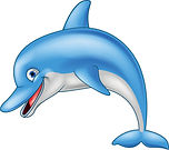 jpeg dolphin.jpeg
