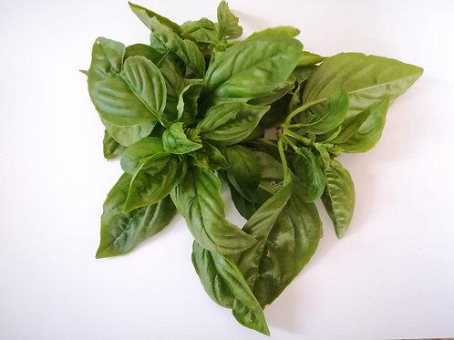 Organic Basil 20g
