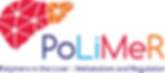 UMCG-H2020-PoLiMeR-logo-768x337.png